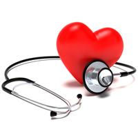 Кордицепс в кардиологии и гематологии при заболеваниях сердца и кровеносной системы