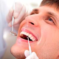 Кордицепс лечит зубы