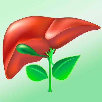 Программа лечения гепатита B и C FOHOW, эффект за полгода